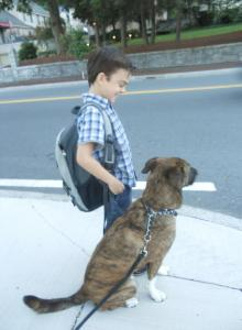 Dylan & Oz at the Bus Stop